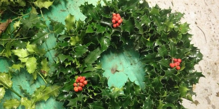 making-holly-wreath